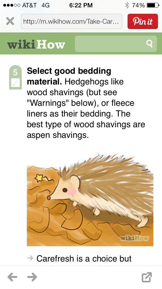 A Hedgehogs Bed Hedgehog Hedgehog Bedding A Hedgehog