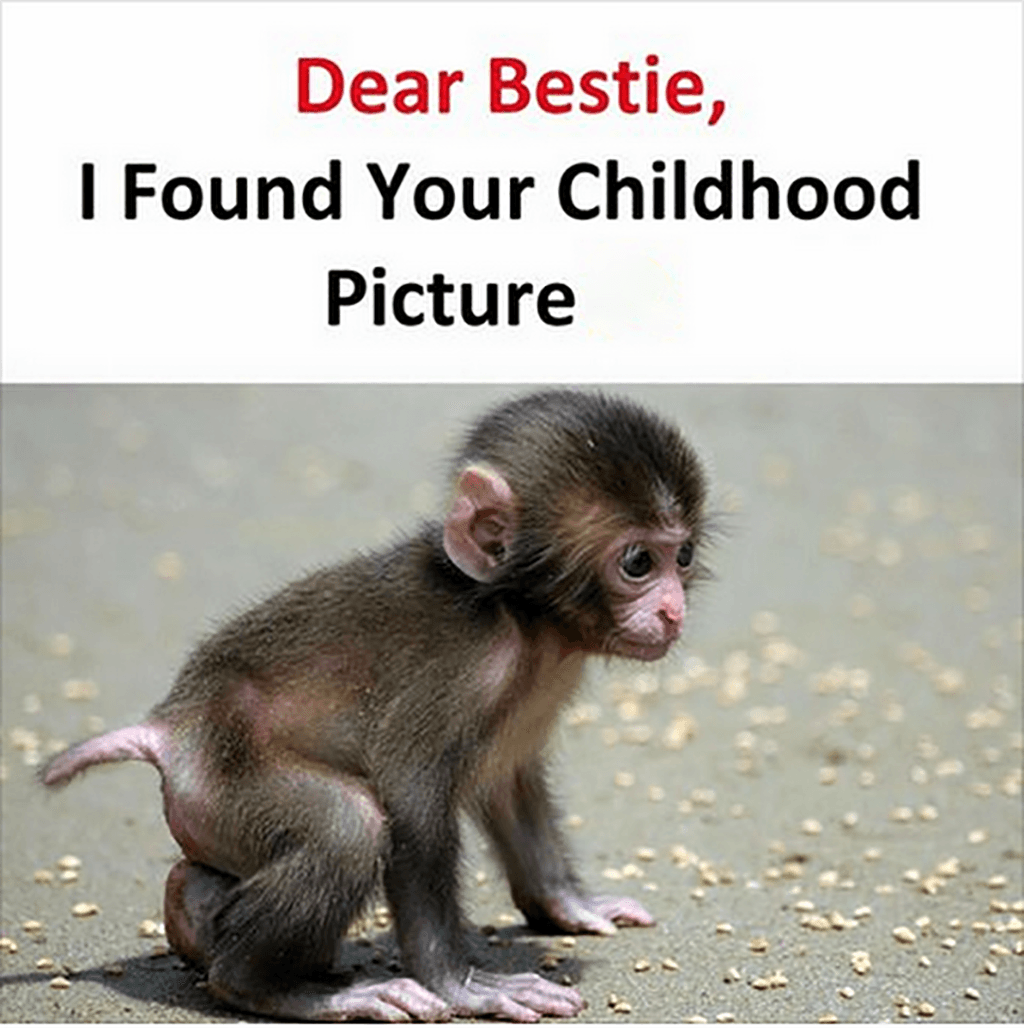 Dear Best Friend I Found Your Childhood Picture Best Friend Jokes Fun Quotes Funny Friend Jokes
