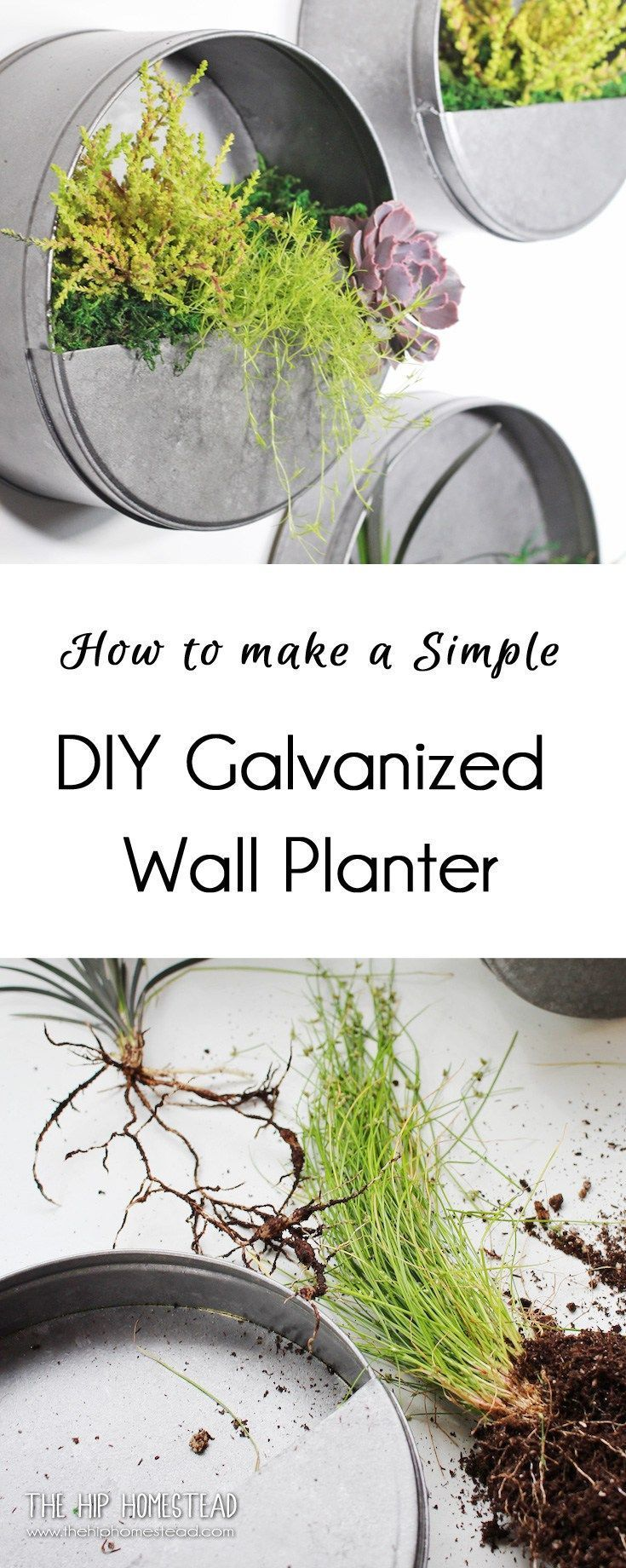 DIY Galvanized Wall Planter How to Make Simple DIY Galvanized Wall Planters - The Hip HomesteadHow to Make Simple DIY Galvanized Wall Planters - The Hip Homestead