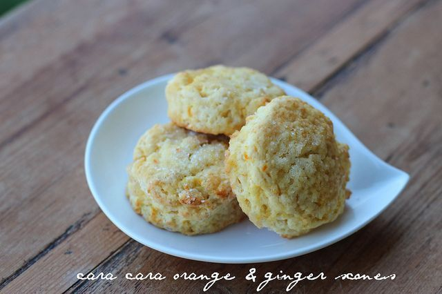 Cara Cara & Ginger Scone - Mark Bittman recipe by Food Librarian #markbittmanrecipes Cara Cara & Ginger Scone - Mark Bittman recipe by Food Librarian #markbittmanrecipes Cara Cara & Ginger Scone - Mark Bittman recipe by Food Librarian #markbittmanrecipes Cara Cara & Ginger Scone - Mark Bittman recipe by Food Librarian #markbittmanrecipes Cara Cara & Ginger Scone - Mark Bittman recipe by Food Librarian #markbittmanrecipes Cara Cara & Ginger Scone - Mark Bittman recipe by Food Librarian #markbittm #markbittmanrecipes