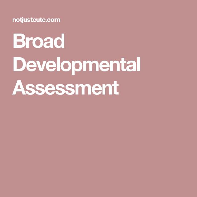 Broad Developmental Assessment