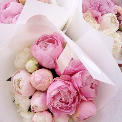 pretty pink peonies | pink flowers ✿ | pinterest | peony and flowers