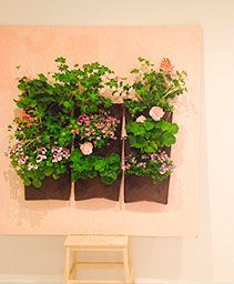 Make your garden a feature of a painting!