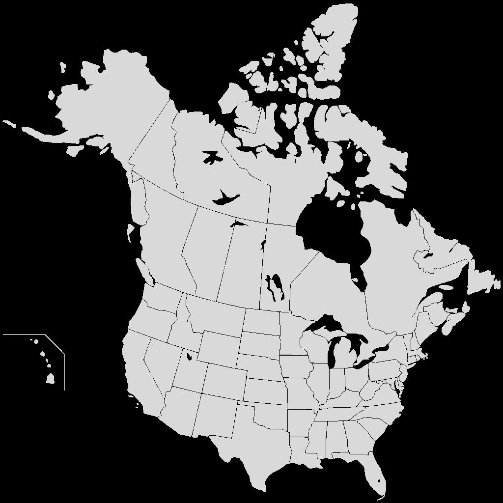 Coloring Map Of Us Luxury Blank Map Of The World With Us States Canada Summer Us Map United States Vacation