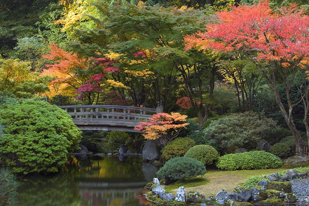 Portland Japanese Garden in Fall Photo Credit David Cobb