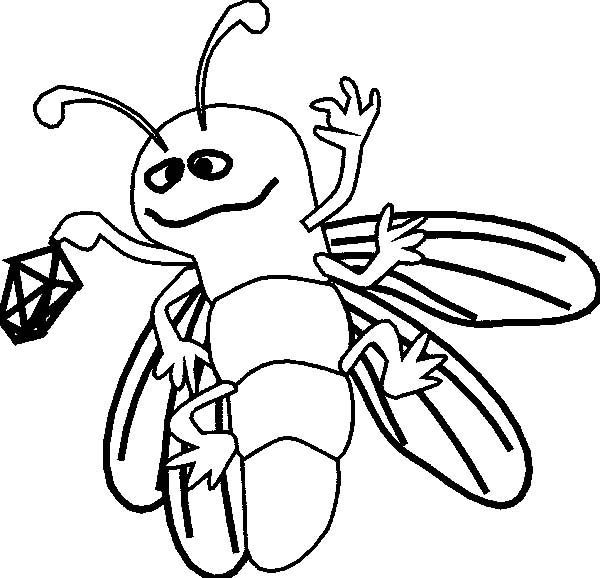 firefly  firefly holding a lantern coloring page