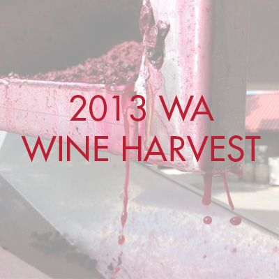 A look at 2013's Washington Wine Harvest