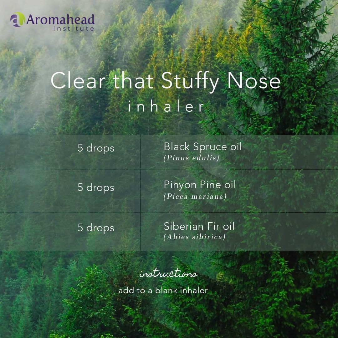 Aromahead Institute On Instagram A Stuffy Nose Can Be Annoying