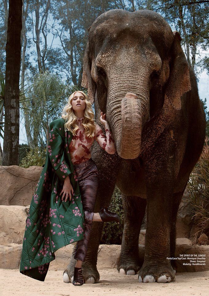 Jvdas Berra photography #worldelephantday