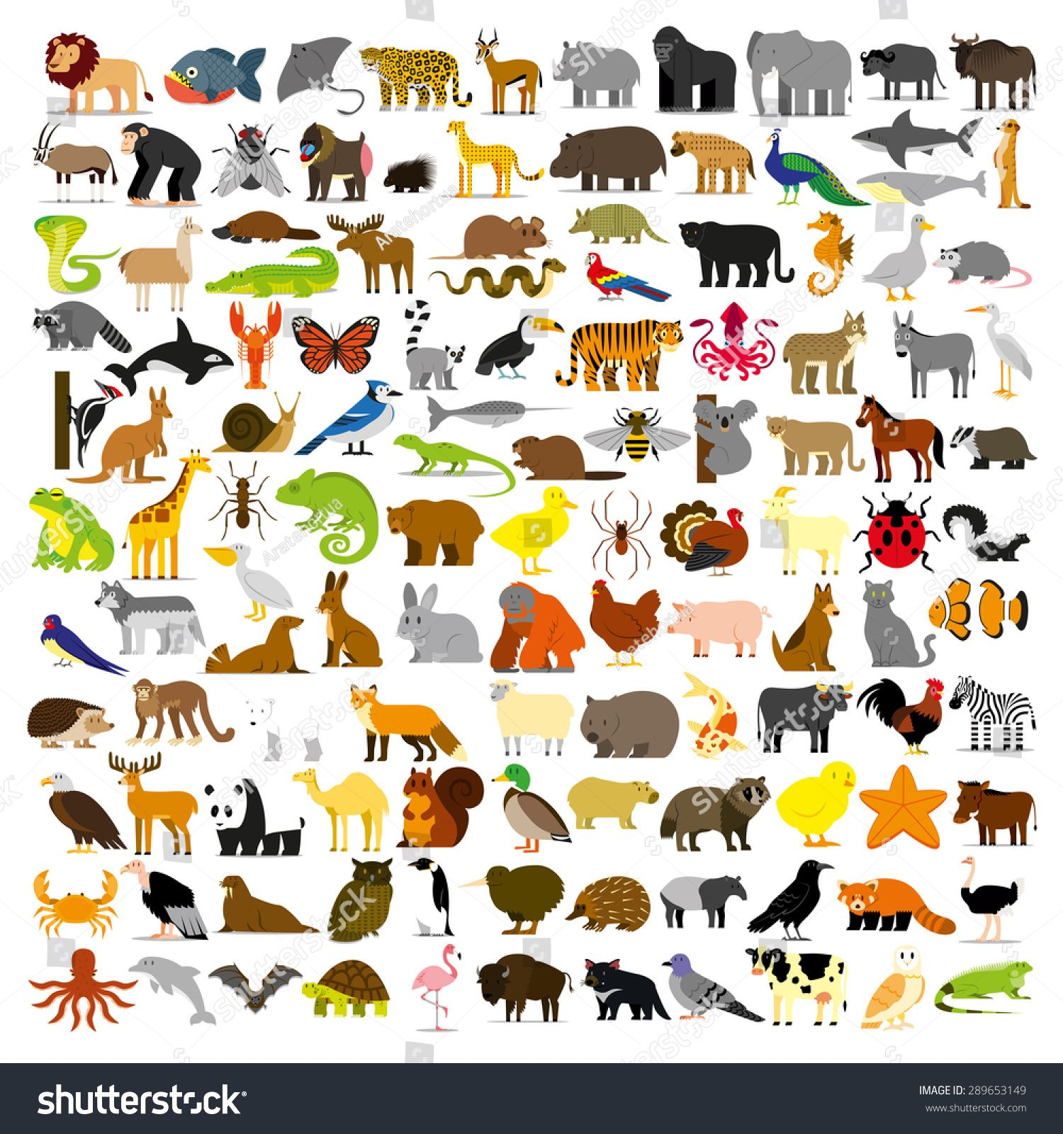 Vector Set Of Cartoon Different Animals Isolated Sponsored Affiliate Set Vector Cartoon Isolated Zhivotnye Alfavit