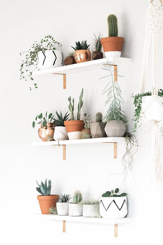 Geometric Air Plant / Succulent Pots – Set of 3 – Concrete - Dekoration