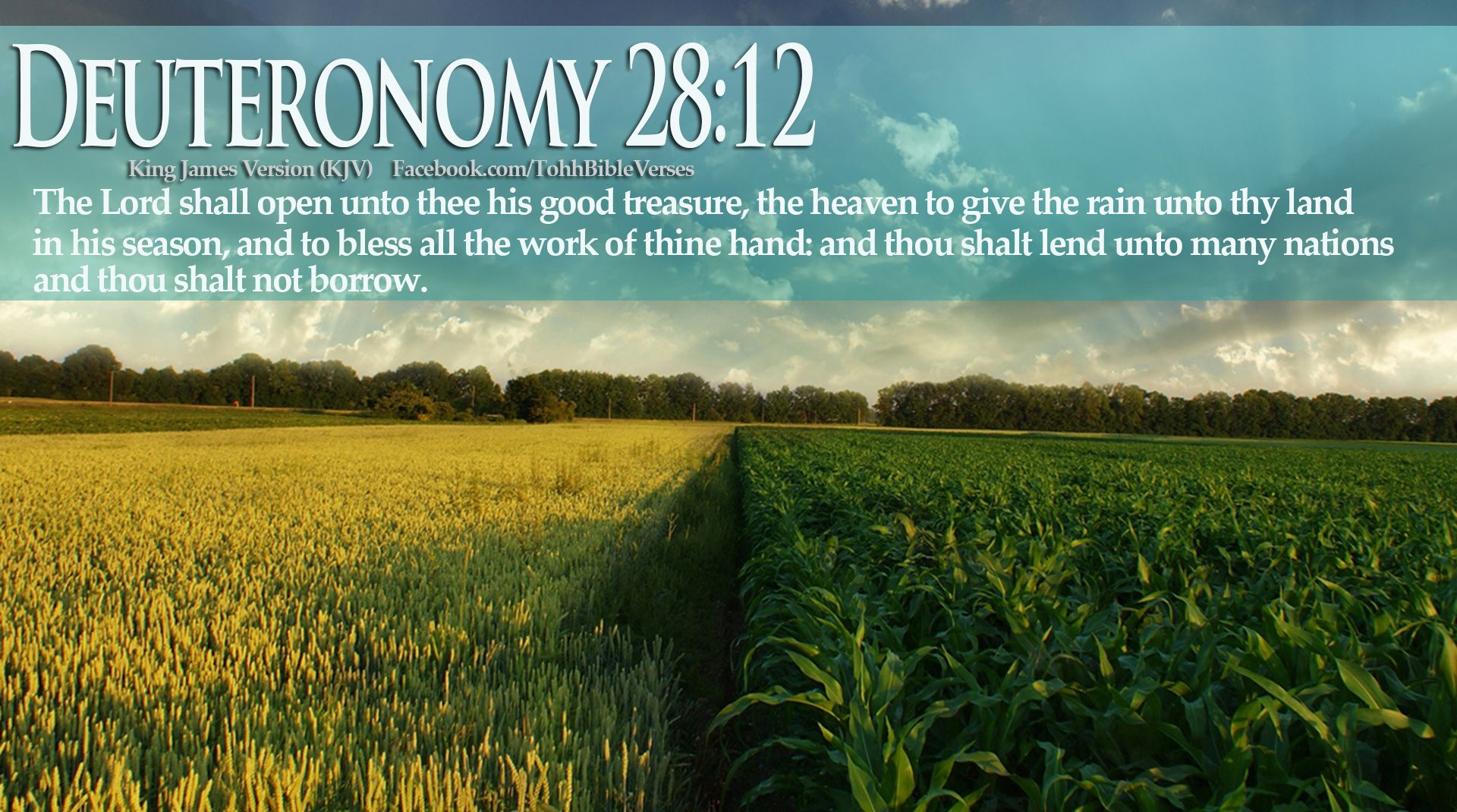 Images of bible verses about harvest god 39 s blessings for Rainwater harvesting quotes