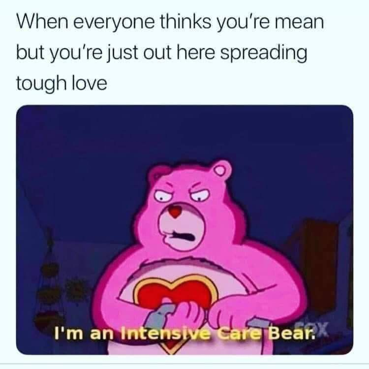 Pin By Lantz Tolles On Bears In 2020 Funny Memes Tough Love Memes