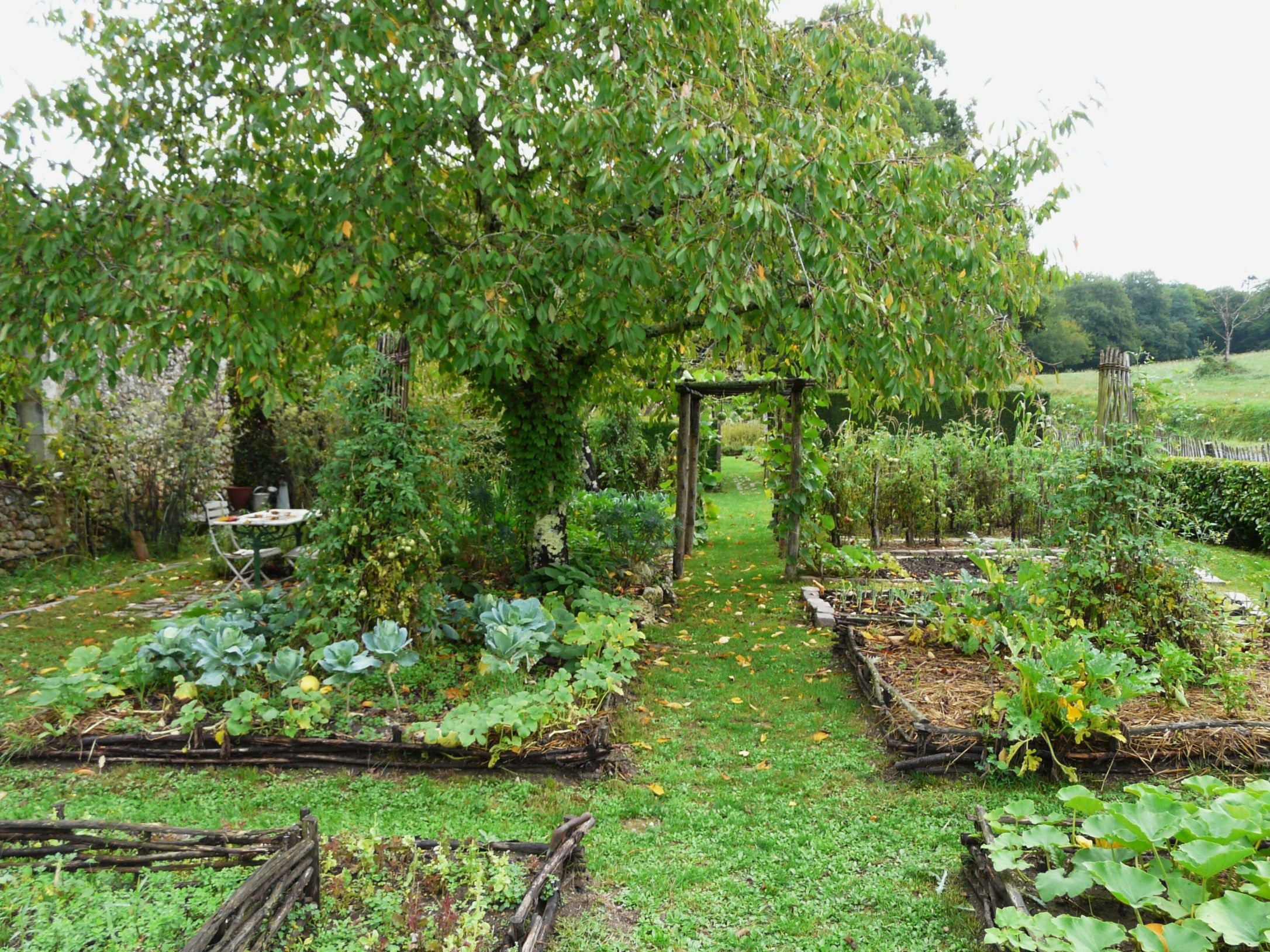 Photo of Unlock the Secrets to a Perfect Garden Layout! (A Reference Tool for Gardeners)