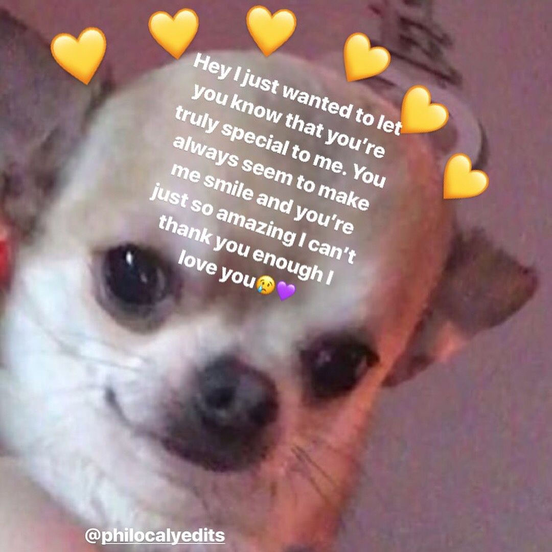 Gn Follow Brokenheartuzi For More Love And Affectionlove And Respect Gang Ignore Tags Loveandaffection Love Af Cute Love Memes Cute Memes Wholesome Memes