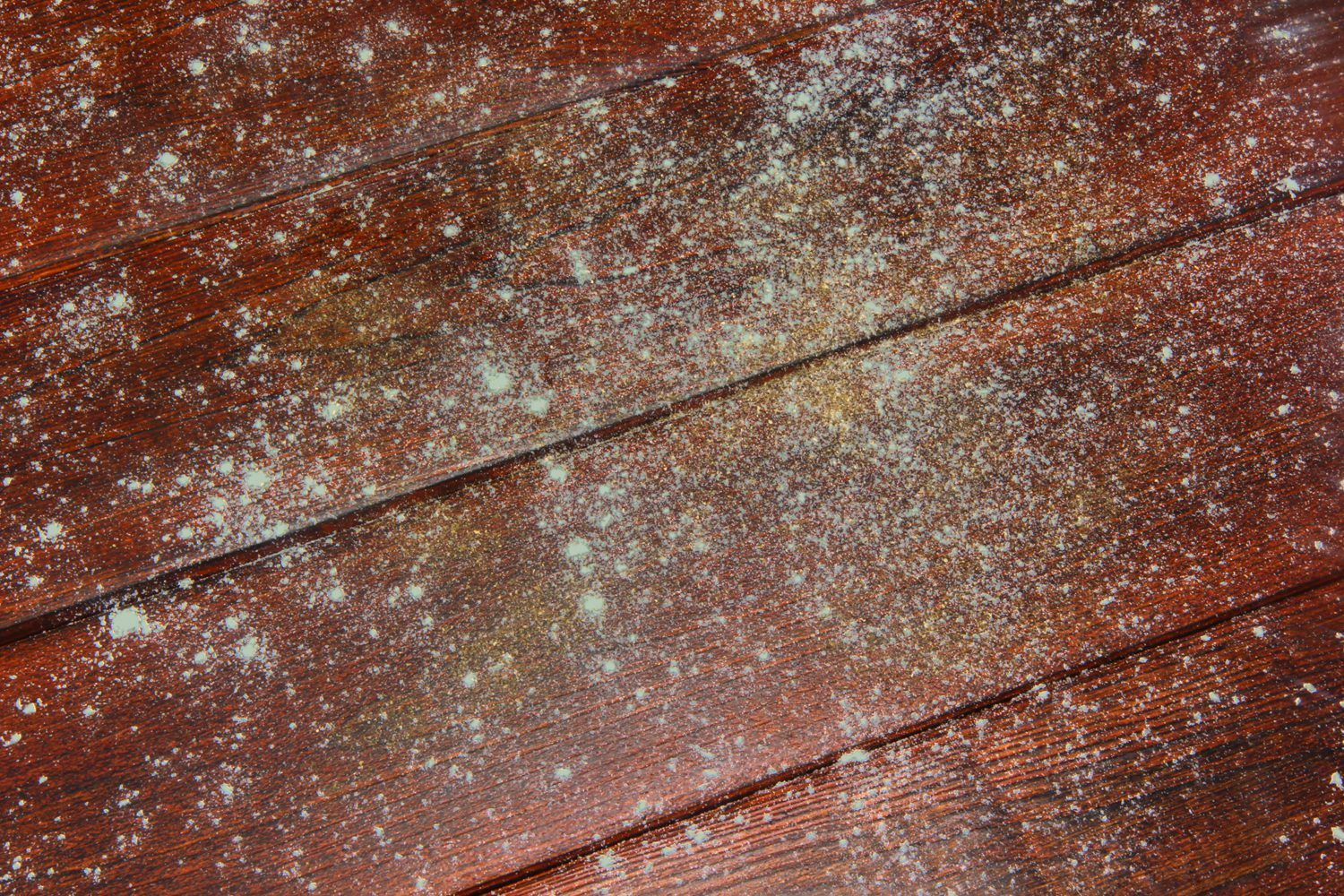 Mold That Grows On Wood Furniture Is There Because Moisture Present And May Be Just One Of Your Problems Fuzzy Mildew Deposits Which Are A Type