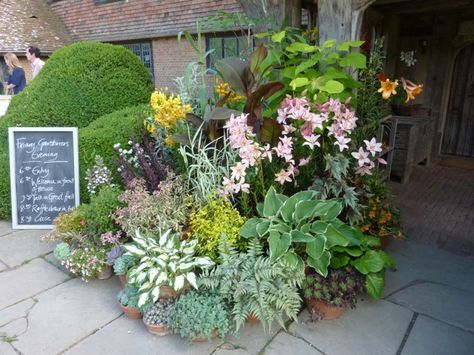 Masterful Planting The Enduring Gardener Plants 400 x 300