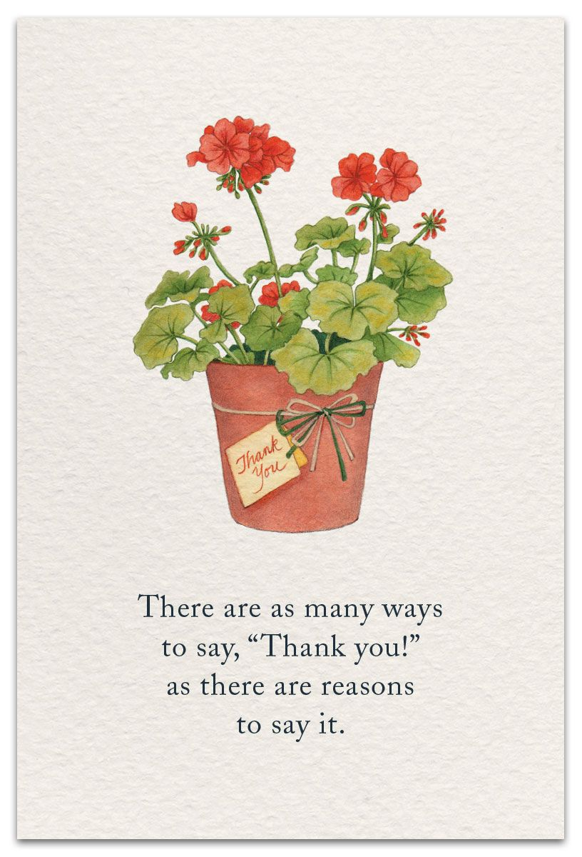 Geranium Thank You Card Cardthartic Com Flower Quotes Flower Meanings Meaning Of Life