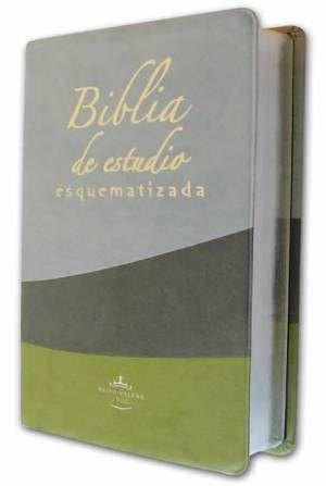 Bajar Biblia De Estudio Reina Valera 1960