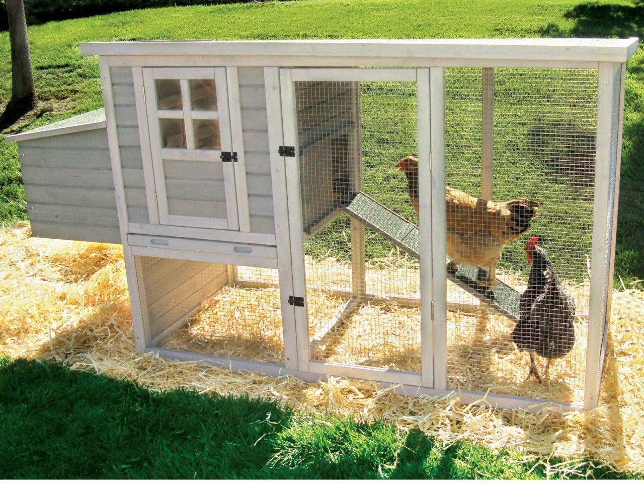 Diy chicken coops plans that are easy to build diy chicken coop plans diy chicken coop and coops for Diy small chicken coop