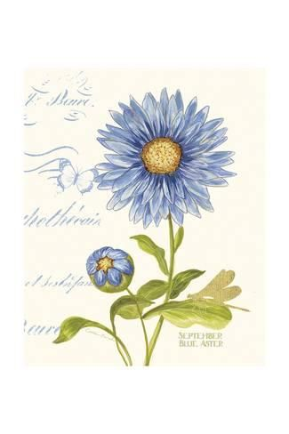 September Blue Aster Art Print Ariane Sarah Art Com In 2020 Birth Flower Tattoos Aster Flower Tattoos September Birth Flower