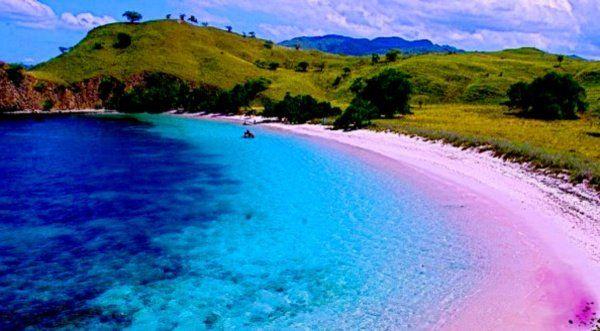 Pantai Pink Lombok Indonesia