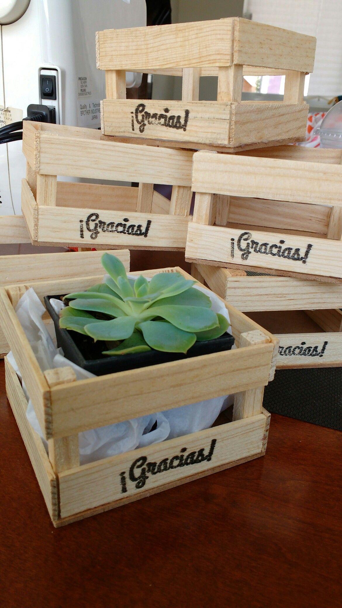 Recuerdos De Bautizo Con Cactus.Pin En Cactus