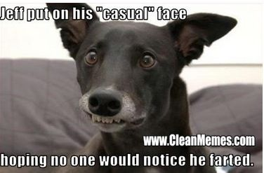 Funny clean dog memes - photo#46