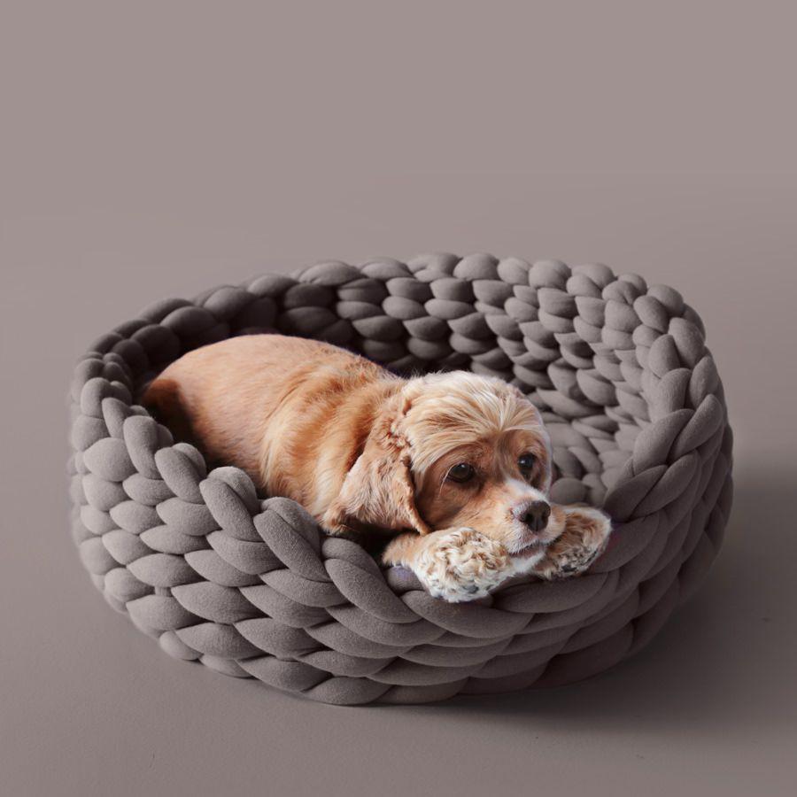 Ohhio Braid Dog Bed Diy Instructions Pdf Ohhio Diy Dog Bed Dog Pet Beds Cat Bed
