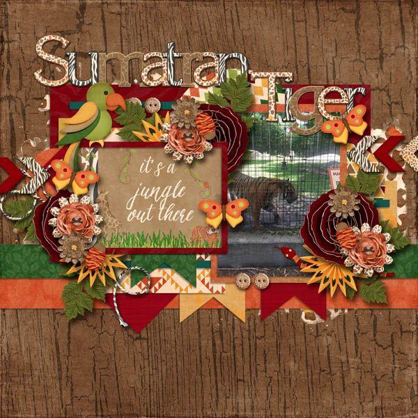 Sumatran Tiger Scrapbook Layouts Pinterest Scrapbook