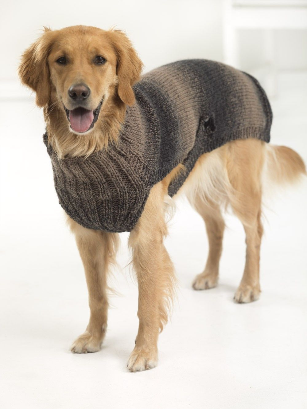Hunter's Urban Dog Sweater (Knit) … Pinteres…