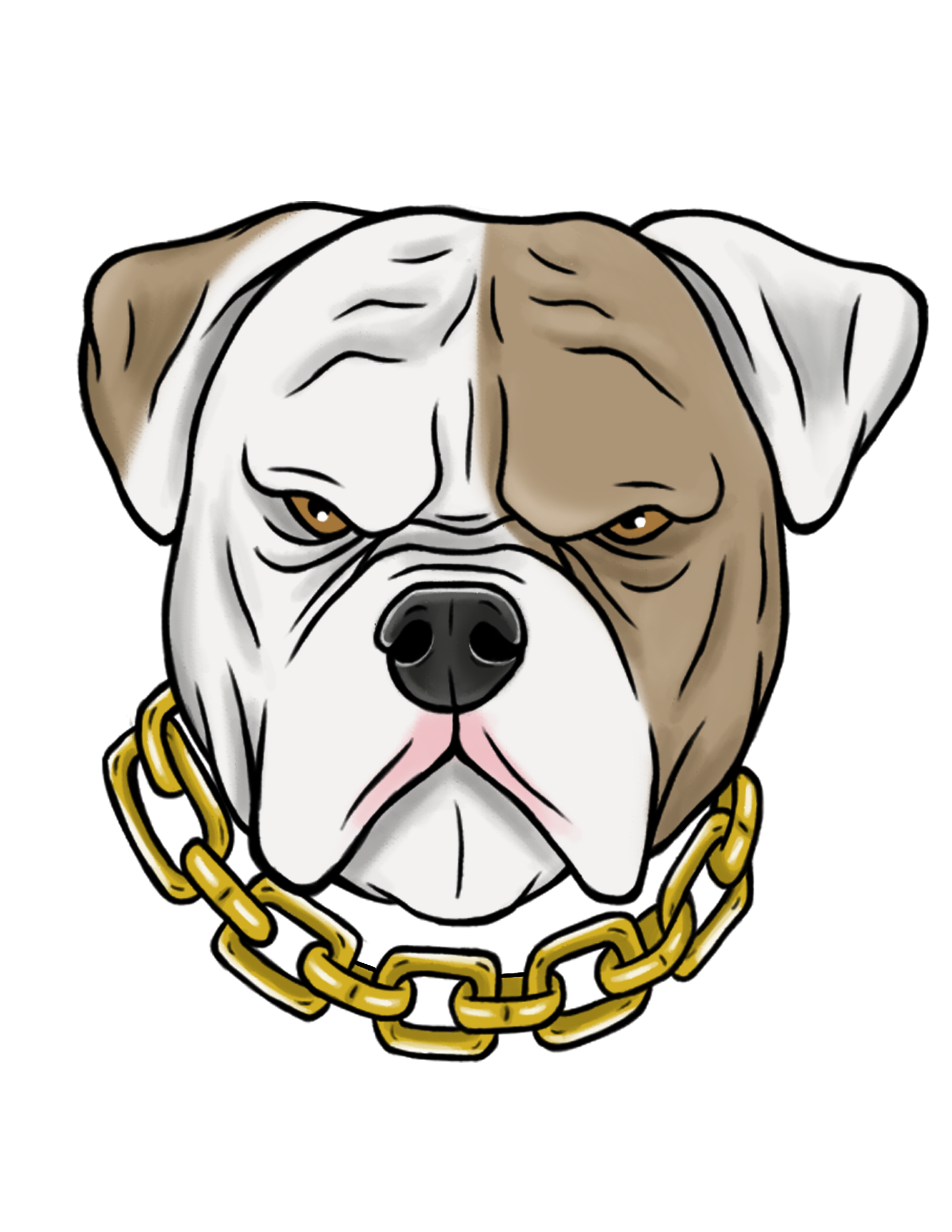 Mad American Bulldog Illustration Pitbull Desenho Desenhos De