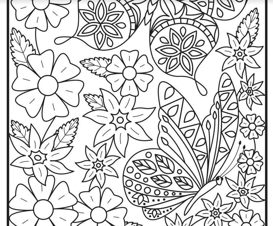 Amazon Com Beautiful Butterflies An Adult Coloring Book