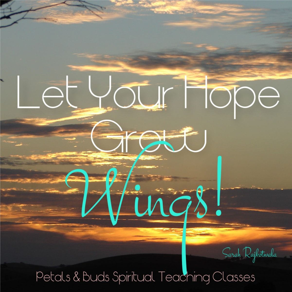Let Your Hope Grow Wings