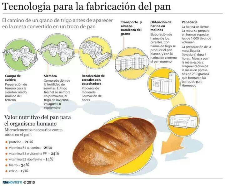 Del Trigo Al Pan Alimentos Panaderias Trigo