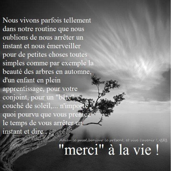 229410 426532607439830 833242418 N Citation Proverbes Et Citations Citations Sur Les Mots