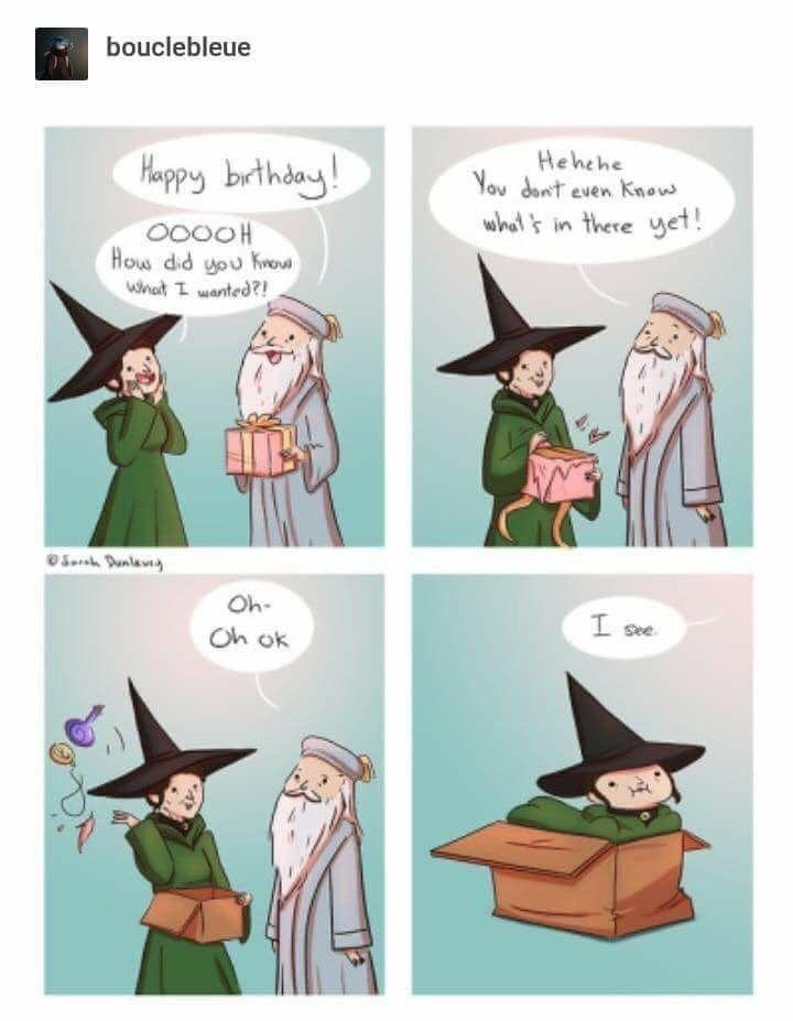 If I Fits I Sit Cats Harry Potter Comics Harry Potter Memes Hilarious Harry Potter Characters