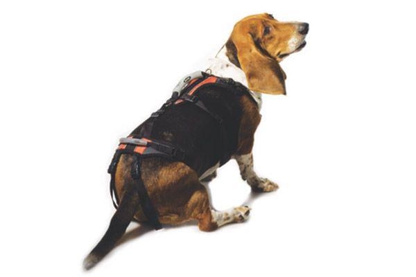 Help Em Up Dog Harness Hip Dysplasia Dog Carrier Dog