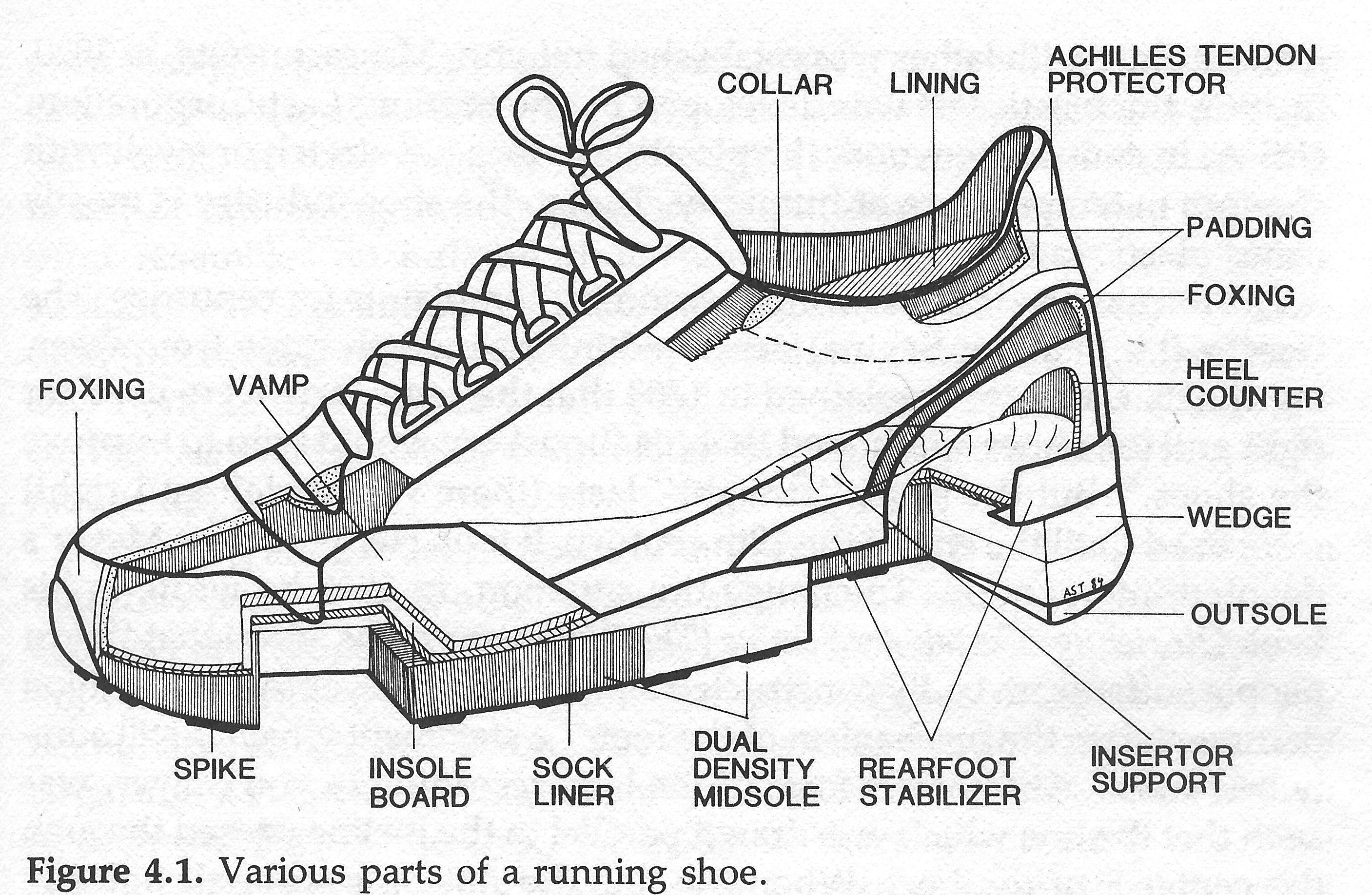 small resolution of diagram of shoe wiring diagram expert horseshoe magnet diagram diagram of shoe