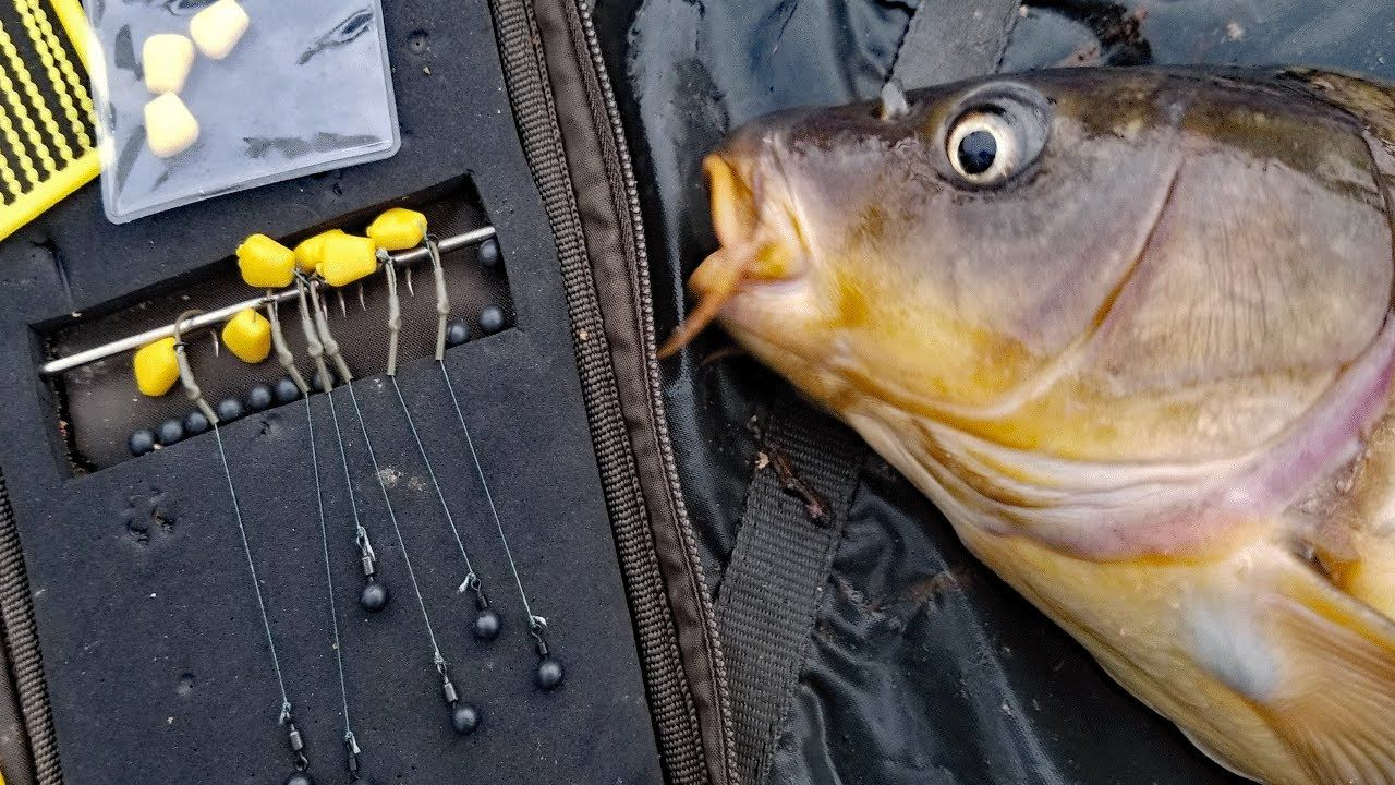 My favorite carp rig how to tie a hair rig and method lead best my favorite carp rig how to tie a hair rig and method lead best pooptronica Images