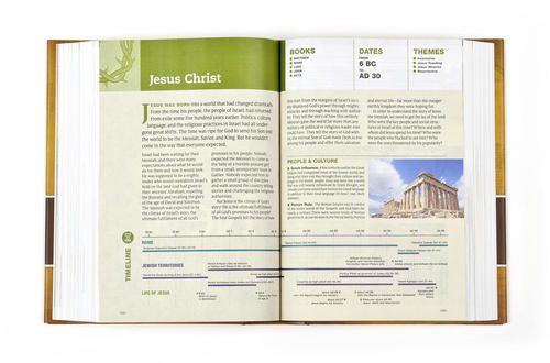 Chronological Life Application Study Bible Nlt Tyndale 9781414339276 Amazon Com Books Life Application Study Bible Life Application Bible Study