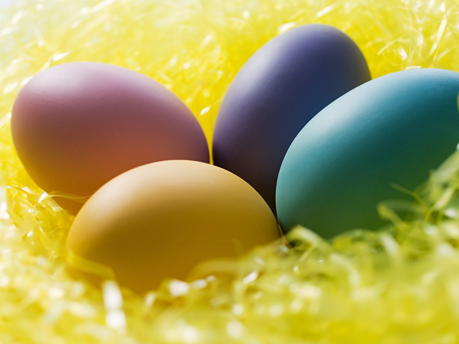 Chicks And Easter Eggs Wallpapers For Your Desktop Backgrounds