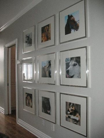 Gallery Wall With Pet Pictures Gallery Wall Photo Wall Gallery Ikea Ribba Frames