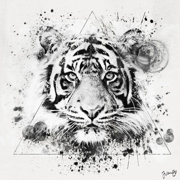 Tigre Blanc Tigr Tattoos Tiger Tattoo Tattoo Designs