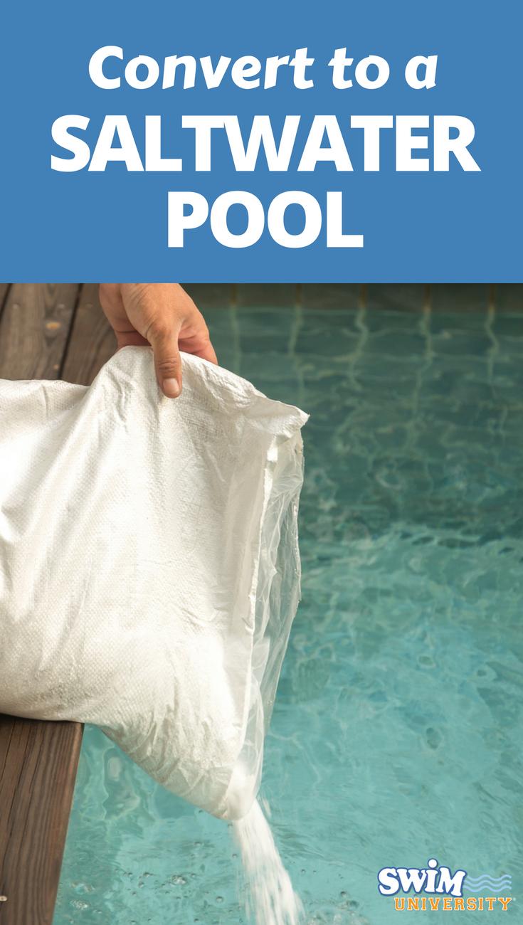 How to convert your pool to salt water salt water pool - Convert swimming pool to saltwater ...