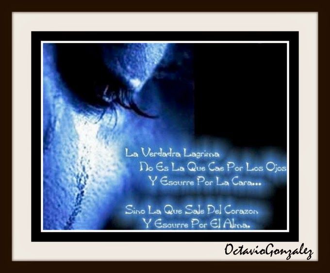 Trazos de mis Escritos y Lecturas: Tienes que Aprender a no callar, ni ocultar...