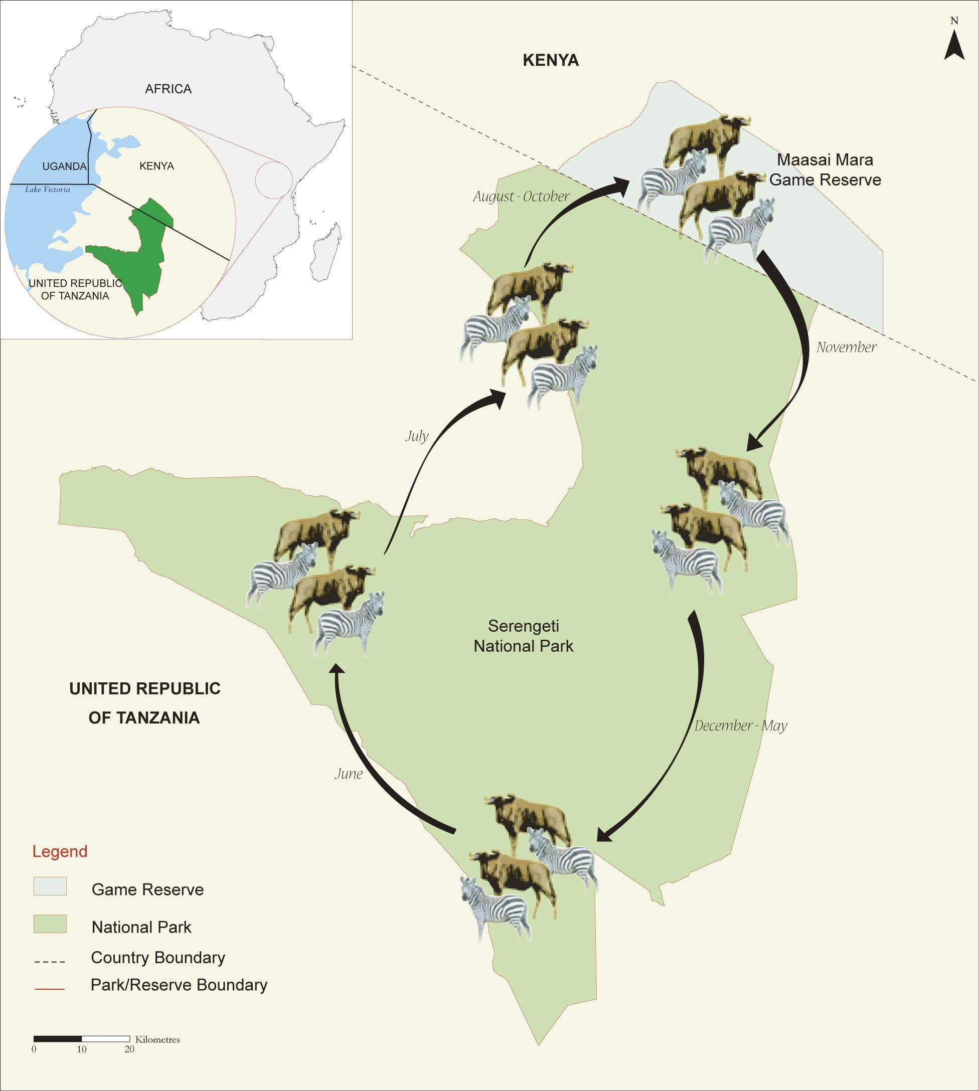 Mara Serengeti Migration Jpg 1952 2176 The Great Migration