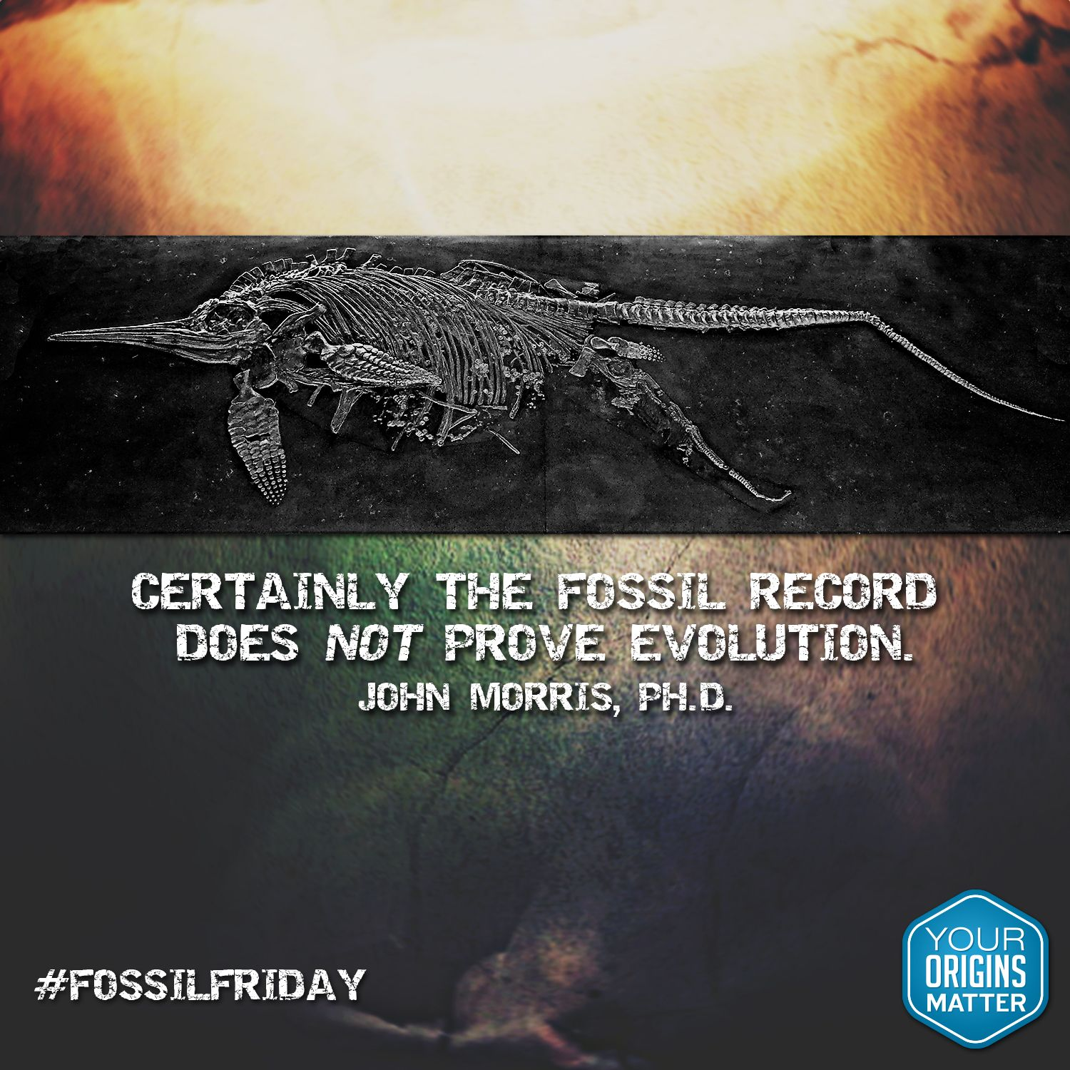 Don T The Fossils Prove Evolution