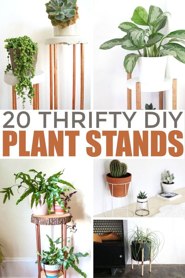20 Thrifty DIY Plant Stands Diy plant stand, House