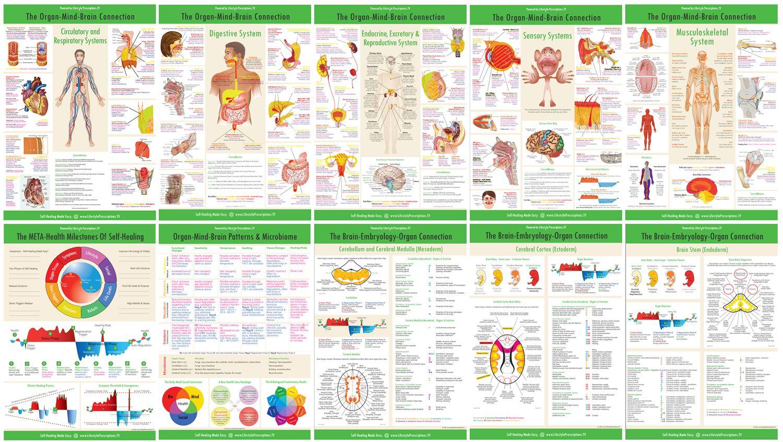 Resultado de imagen para brain health coaching